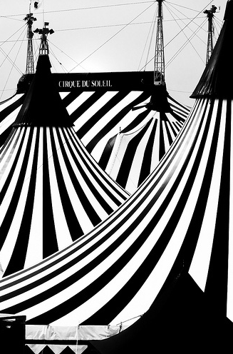 stripe tents