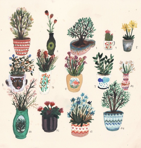 pots and plants 1
