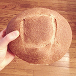 sourdough wheat bread