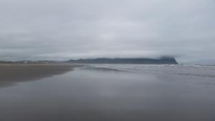 A morning walk on the beach.